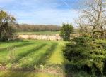 photo-jardin-back-yard-4